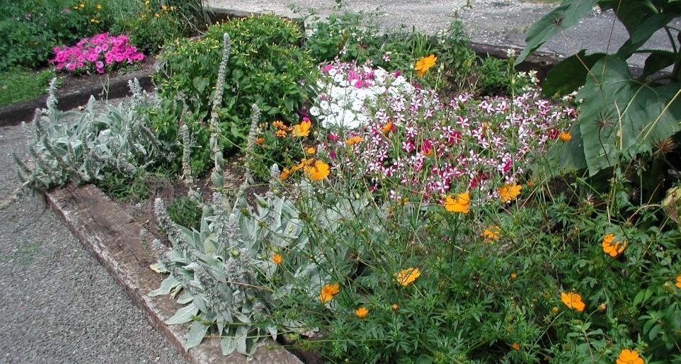 Spring Garden Planning Series Flowers Ornamental Spaces Parks